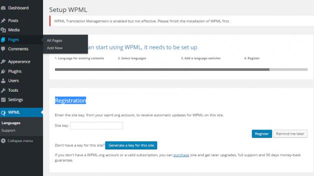 wpml-conf-4